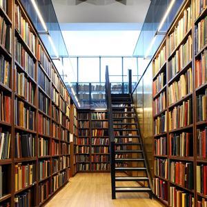 Библиотеки Городца