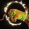 Цирки в Городце